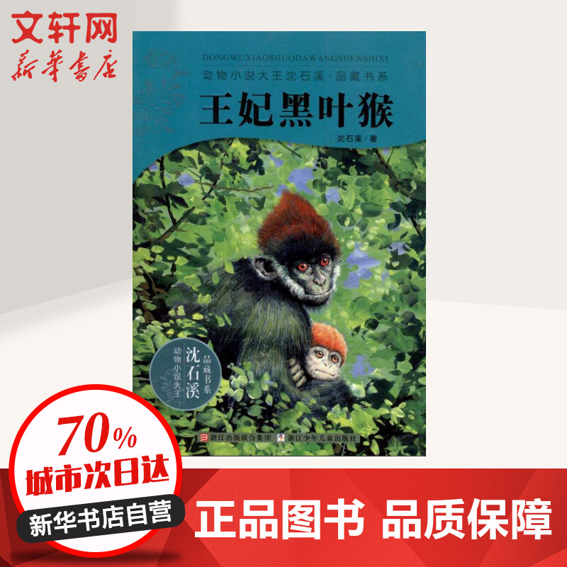 王妃黑*/动物小说大王沈石溪.品藏书系