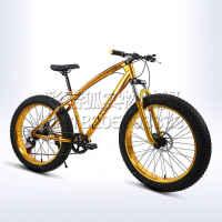 20 26寸双碟刹24 27变速减震宽粗大轮胎哈雷沙滩雪地山地自行车