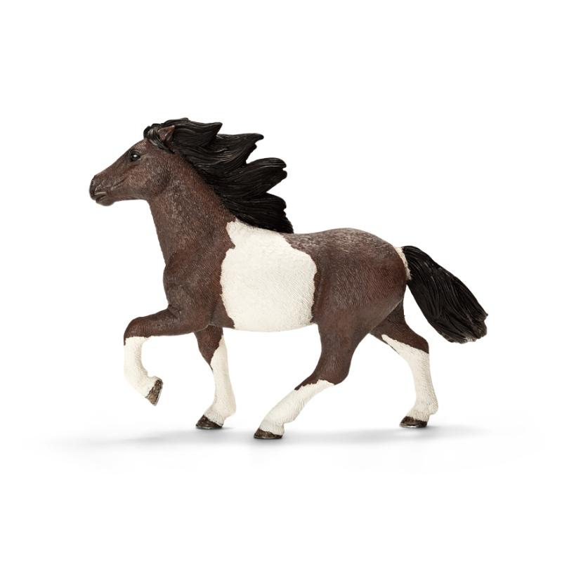高级动物模型