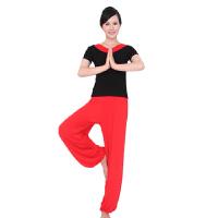 春夏季瑜伽舞蹈服 短袖广场舞服装健身瑜珈服装演出服表演服