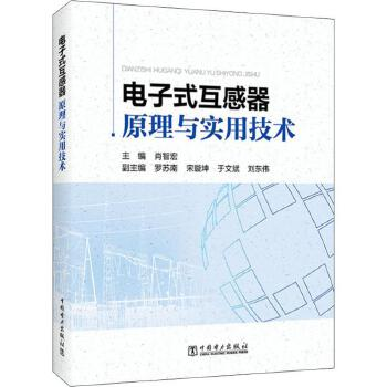 电子式互感器原理与实用技术