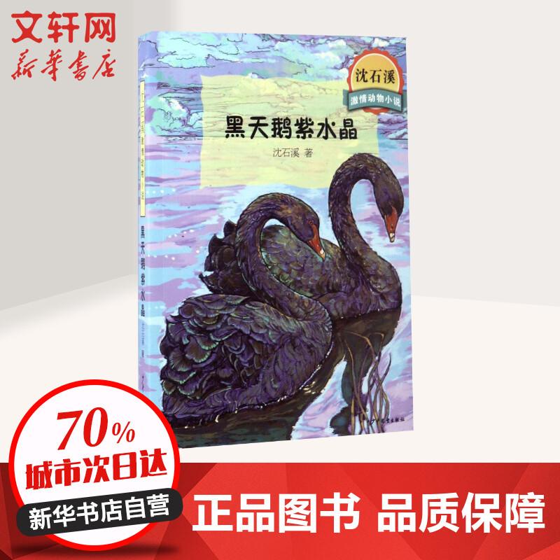 黑天鹅紫水晶/沈石溪激情动物小说 沈石溪 少年儿童出版社