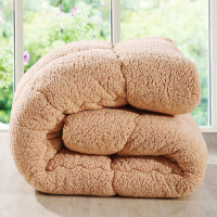 【包邮】伊迪梦家纺 保暖羊羔绒被 秋冬毛绒冬被 不掉毛超厚舒适柔软被芯子 春秋被单双人大小床PV112