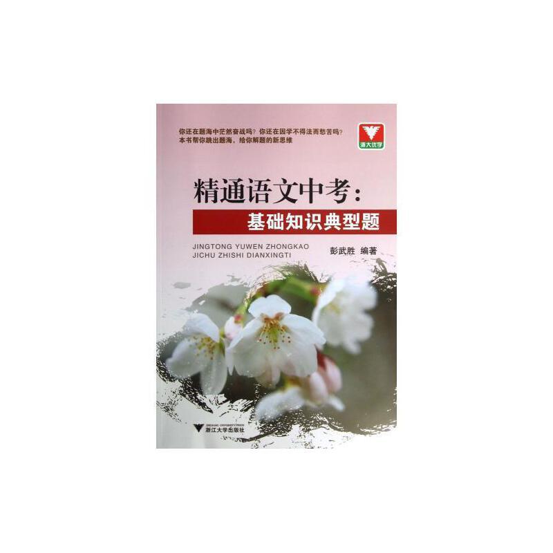 精通语文中考--基础知识典型题 彭武胜 正版书籍