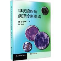 甲状腺疾病病理诊断图谱 (英)格瑞斯・C.H.杨(GRACE C.H.YANG) 主编;杨栋 译