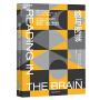 脑与阅读:破解人类阅读之迷