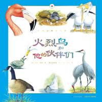 听大自然讲故事:火烈鸟和他的伙伴们