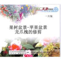果树盆景-苹果盆景龙爪槐的修剪VCD( 货号:103509022100307)