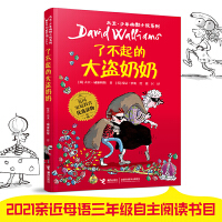 大卫・少年幽默小说系列:① 了不起的大盗奶奶