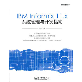 IBM Informix 11.x系统管理与开发指南